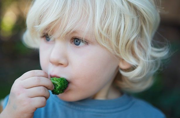 How to feed a fussy toddler