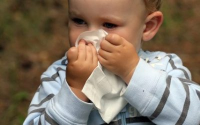 Hayfever and your child